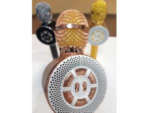 Караоке микрофон WS-669 изображение 2